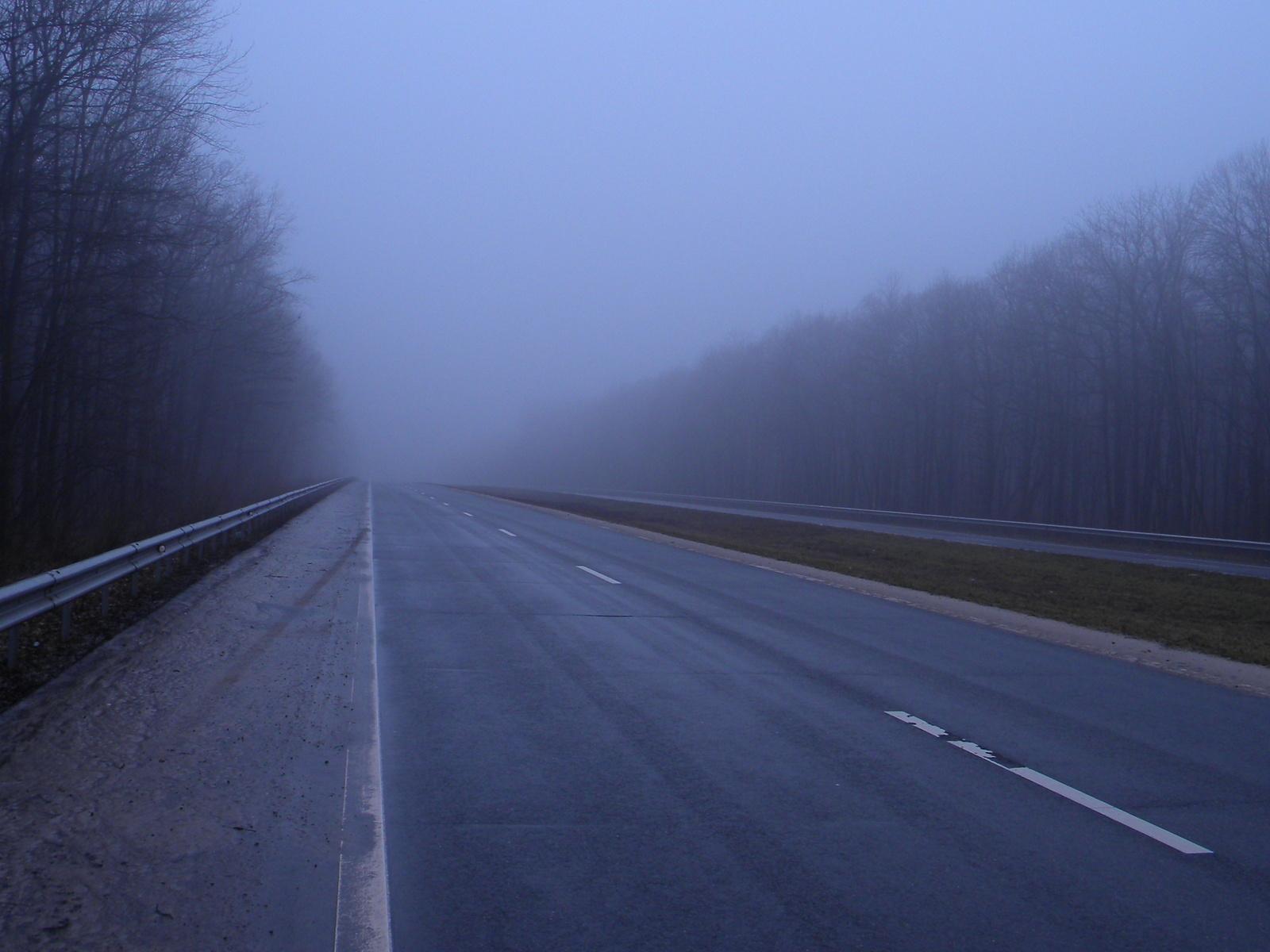 Тверских водителей предупредили о сильном тумане