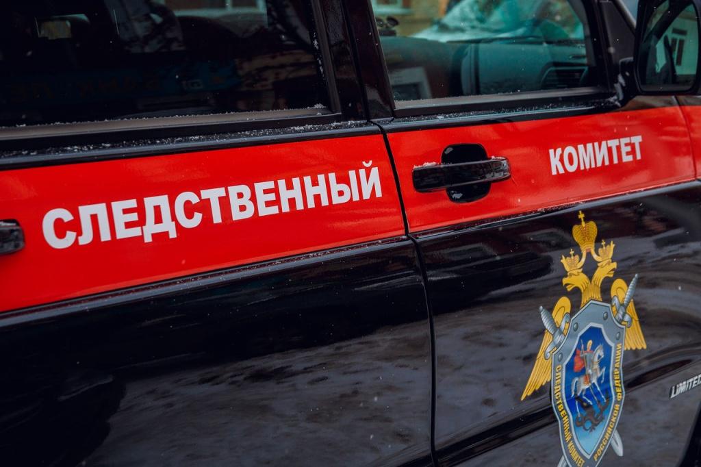 В Тверской области нашли пропавшую 12-летнюю девочку