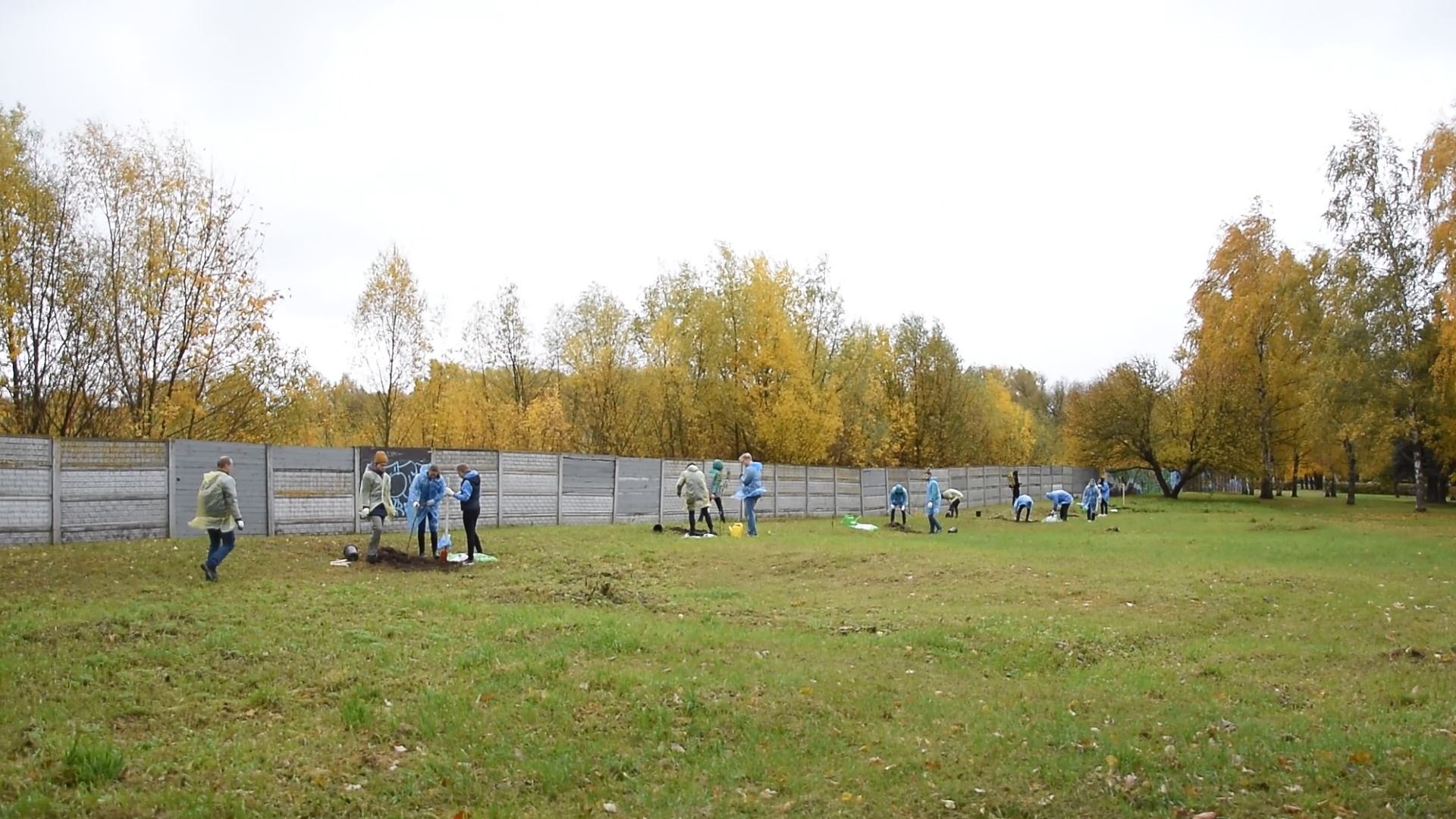 В Тверской области подвели итоги  конкурса «Я - ЭКОволонтер!»