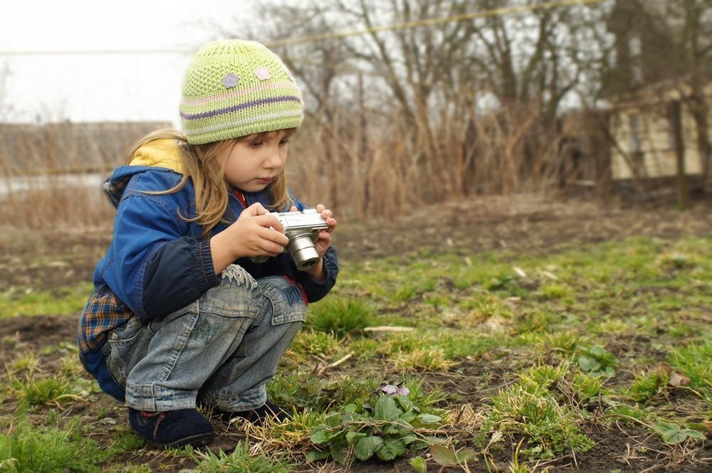 Тверская станция юных натуралистов подготовила дистанционные программы