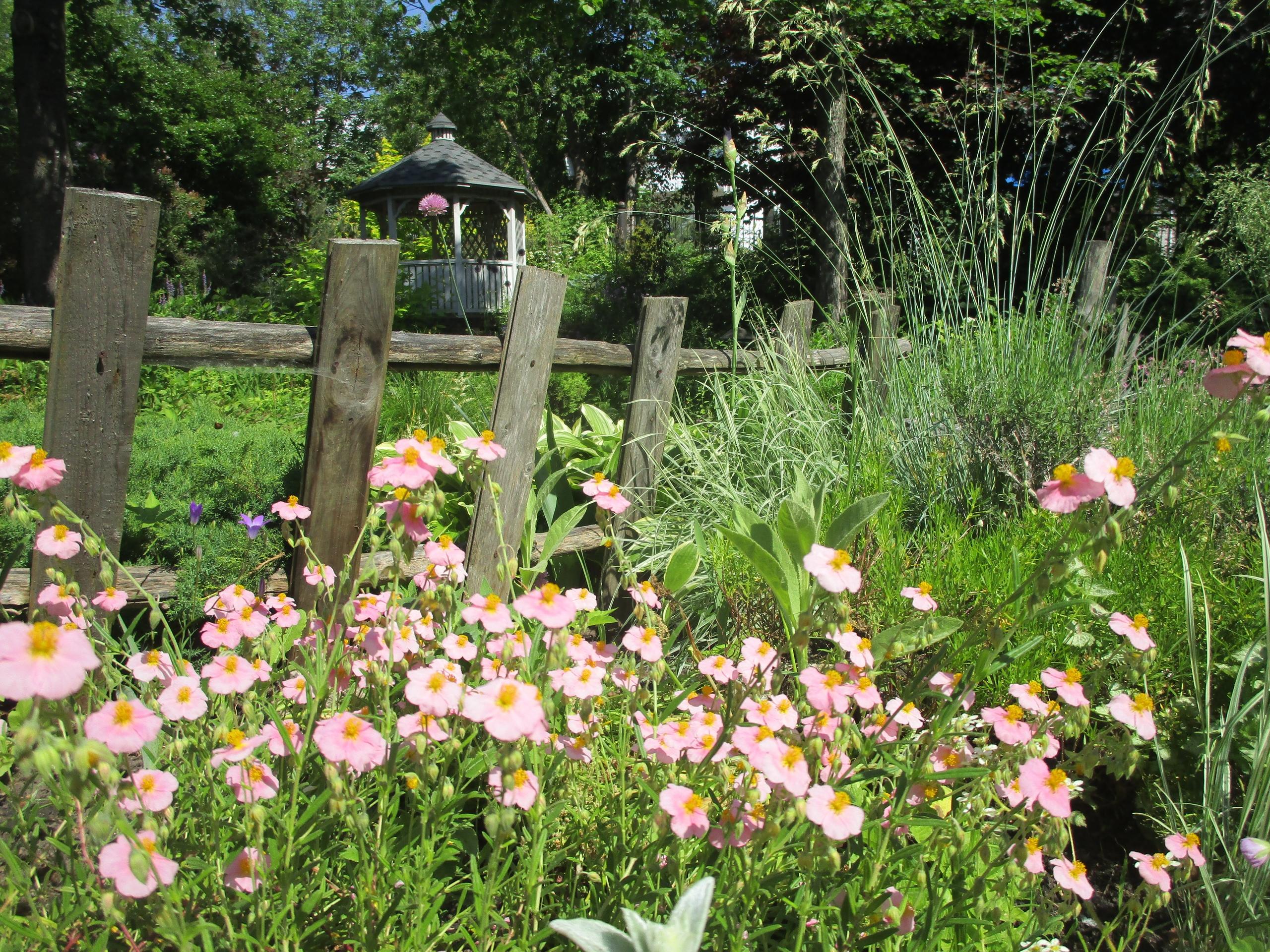 В Твери парк Ботанического сада открыли для посетителей