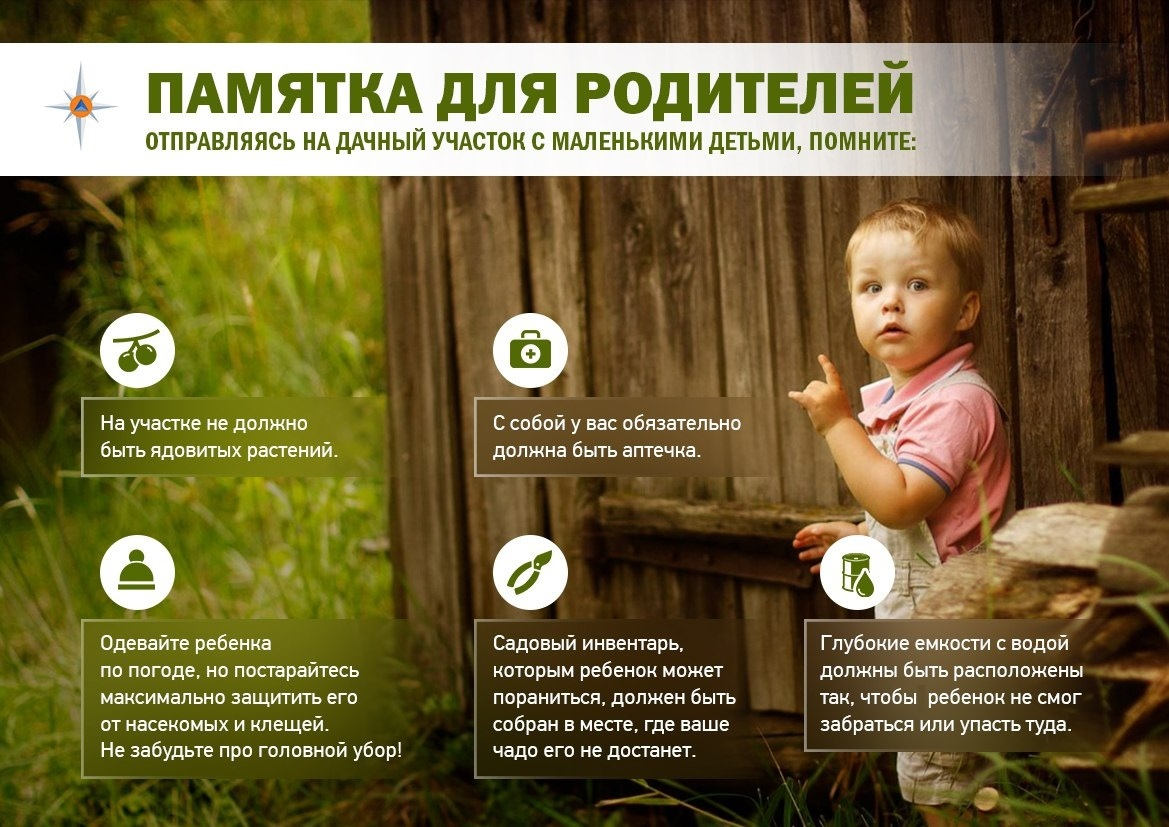 В МЧС России по Тверской области рассказали, как безопасно отдыхать с детьми на даче