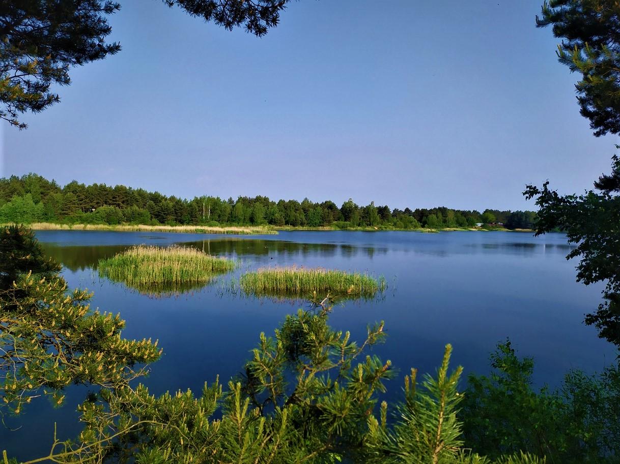 Тверская область вошла в топ популярных волжских регионов для отдыха летом