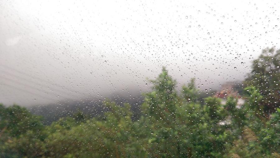 В Тверской области ожидается туман и гроза