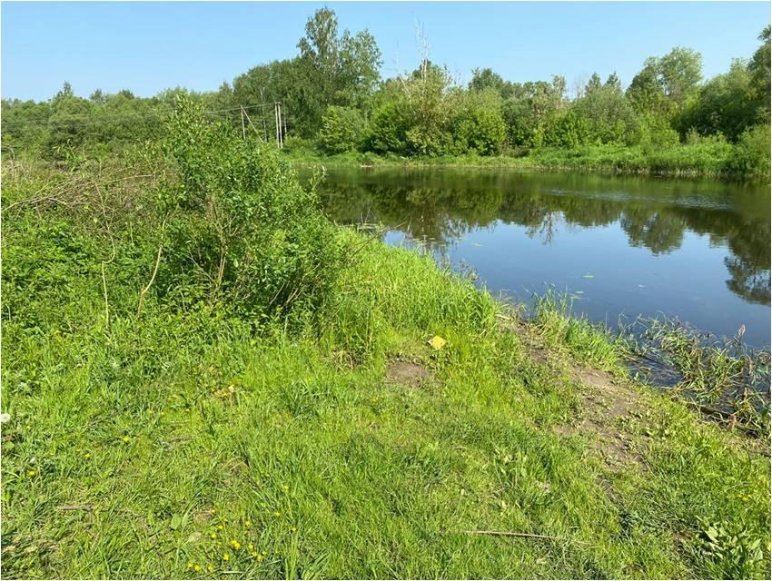 В Тверской области устанавливают личность мужчины, утонувшего в реке Молога