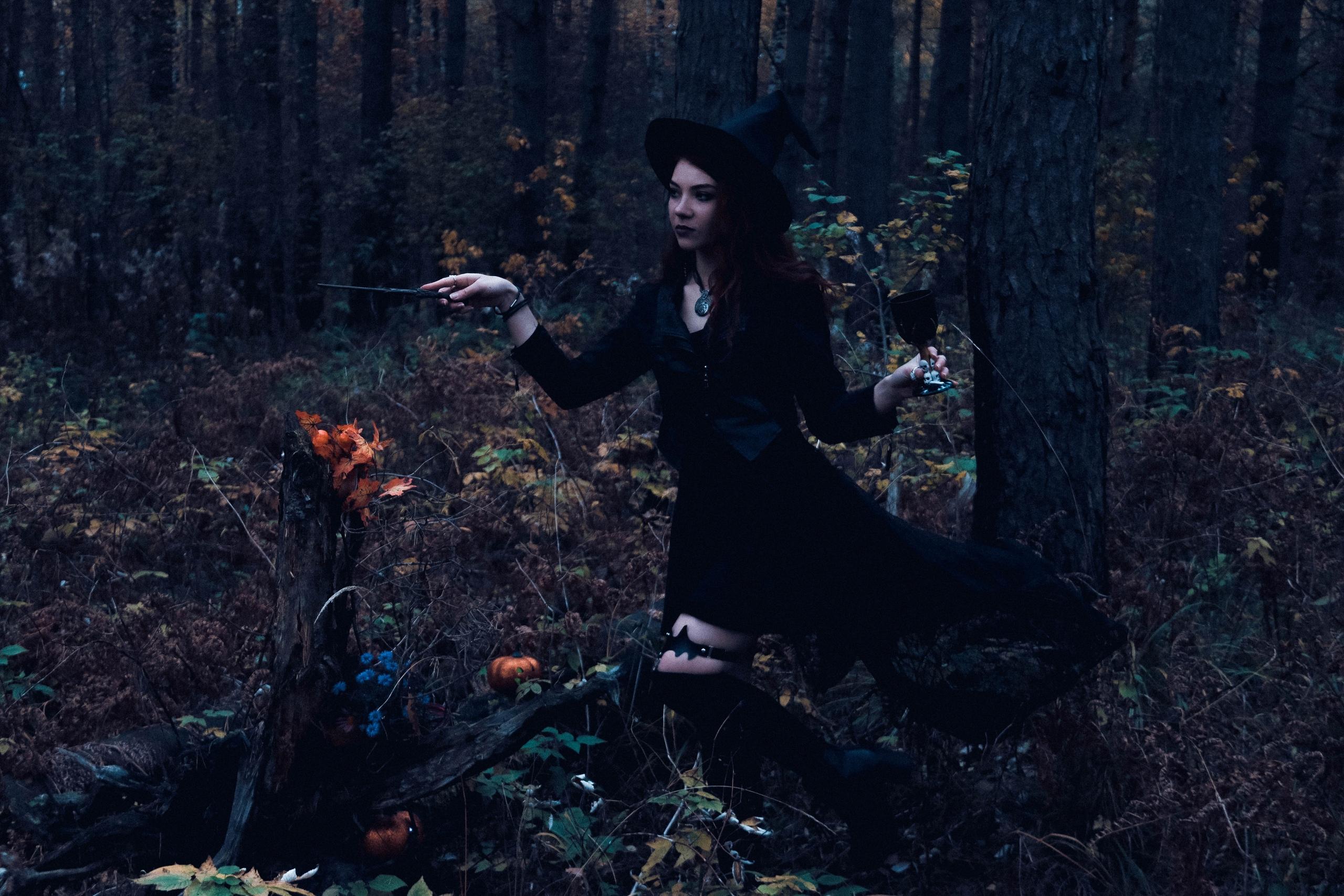 Если заблудился в лесу: памятка по выживанию в дебрях Тверской области