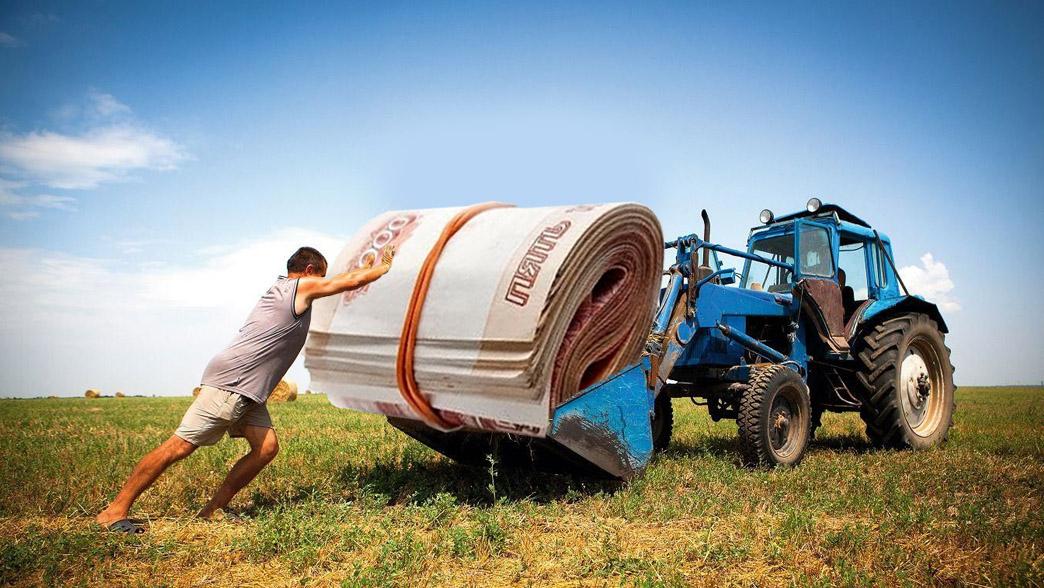 Поддержка фермеров фото