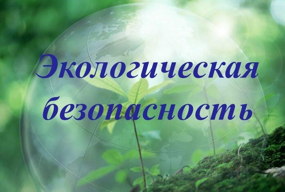 В Нелидовском районе обсудили экологическую безопасность