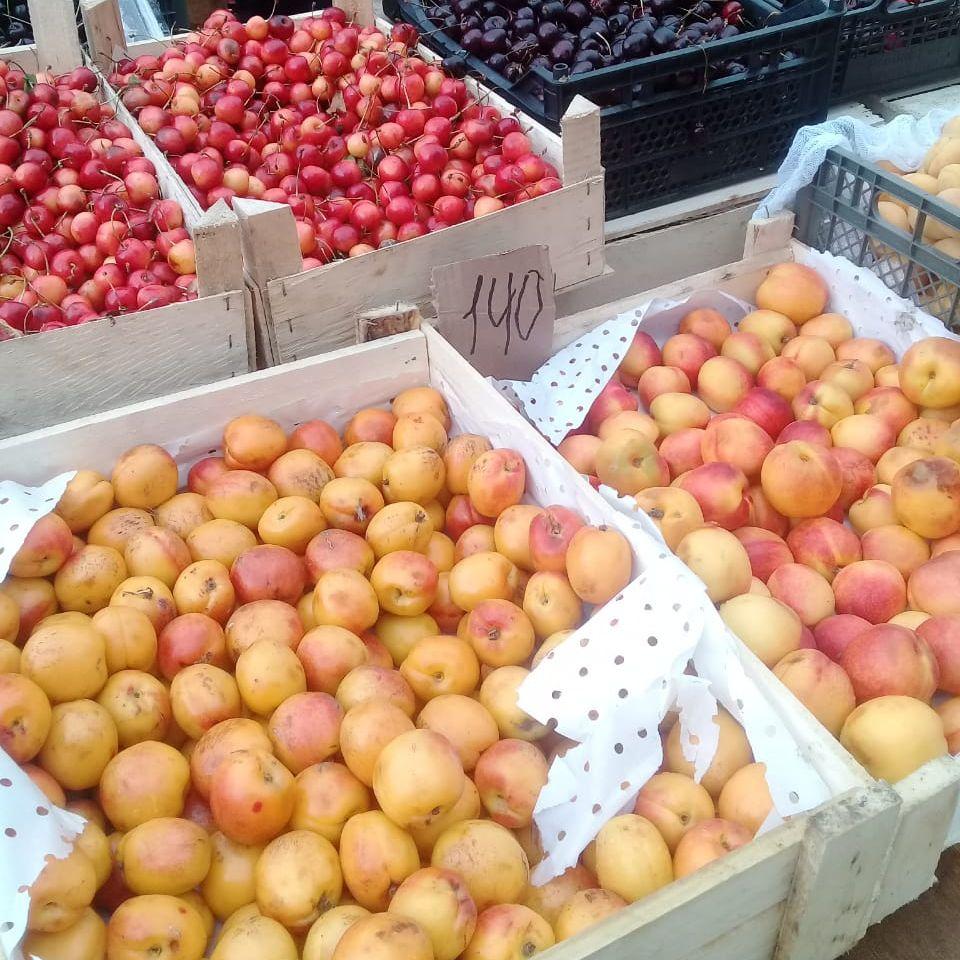 На рынке Тверской области продавали семена и фрукты без документов