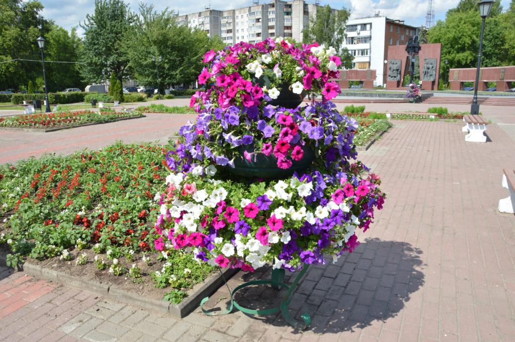 Ломать не строить: Тверские вандалы разломали вазон и раскидали цветы у захоронения
