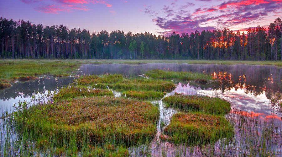 Ещётри особо охраняемые природных территорийпоявились в Тверской области