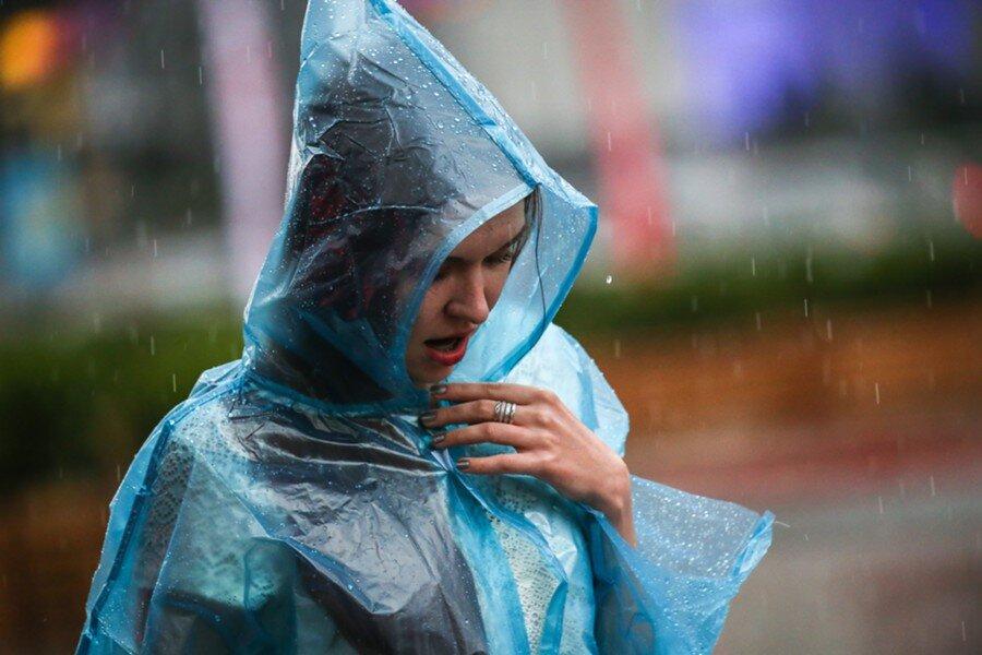 Жителей Тверской области ждет дождливая неделя