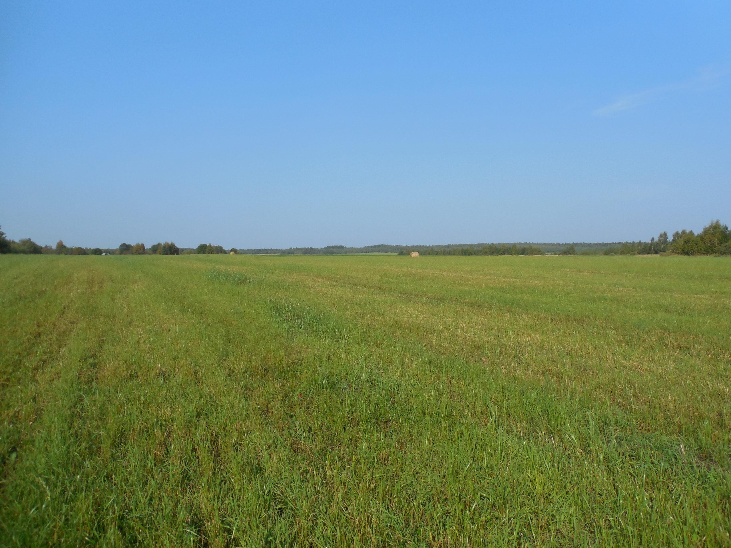 В Конаковском районе введено в оборот свыше 30 гектаров сельскохозяйственных угодий