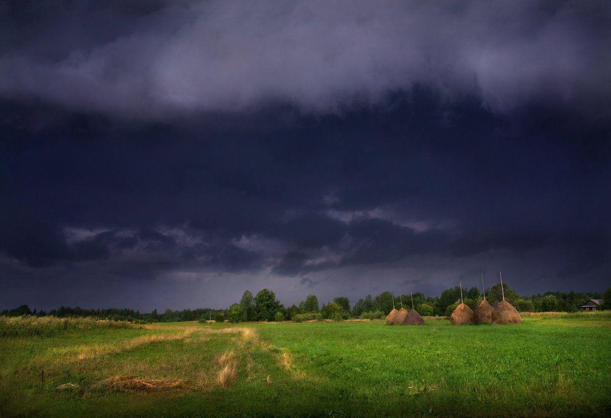 Штормовой ветер и грозу ожидают в Тверской области