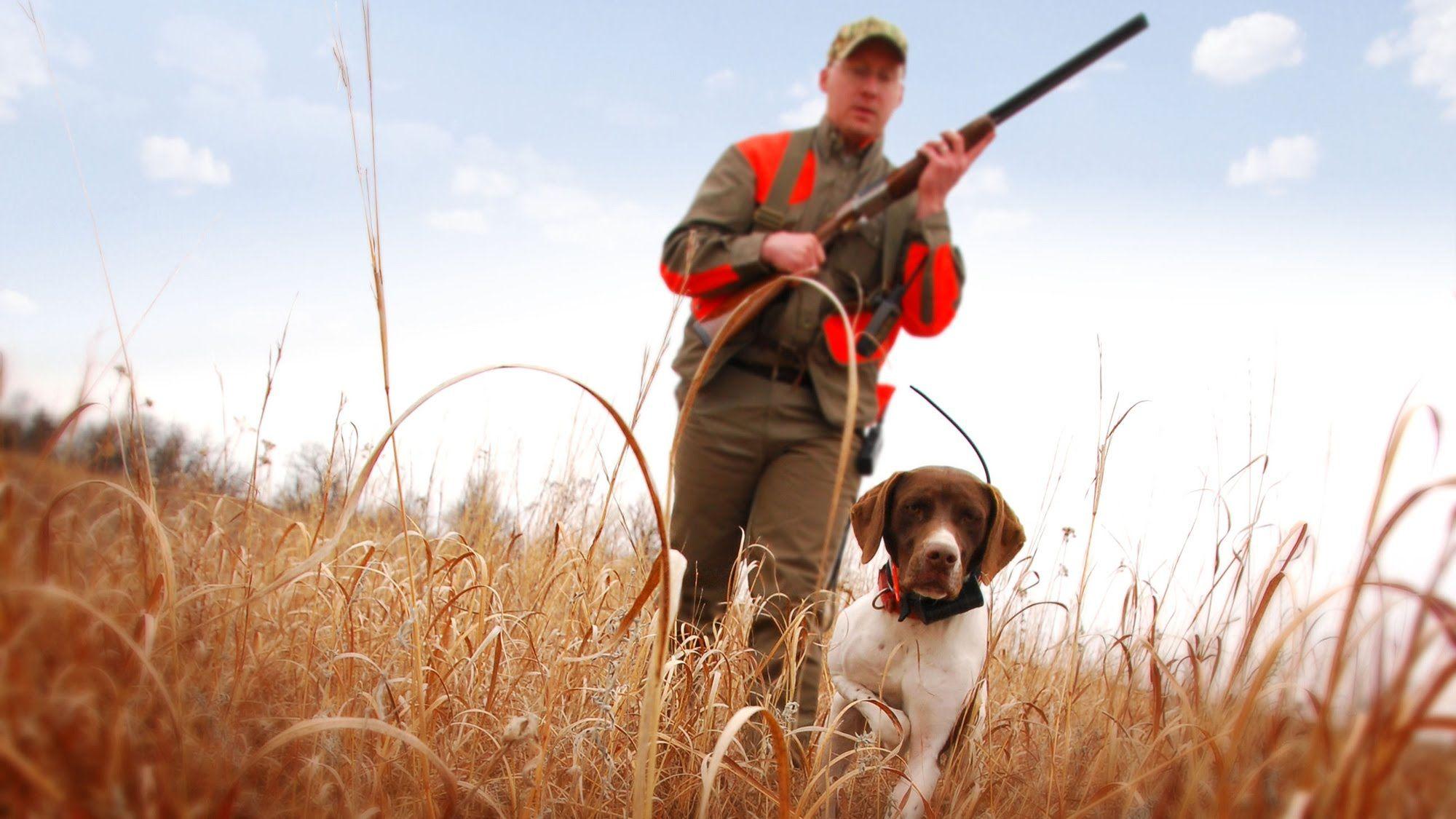 Объявлены даты, когда можно охотиться осенью в Тверской области