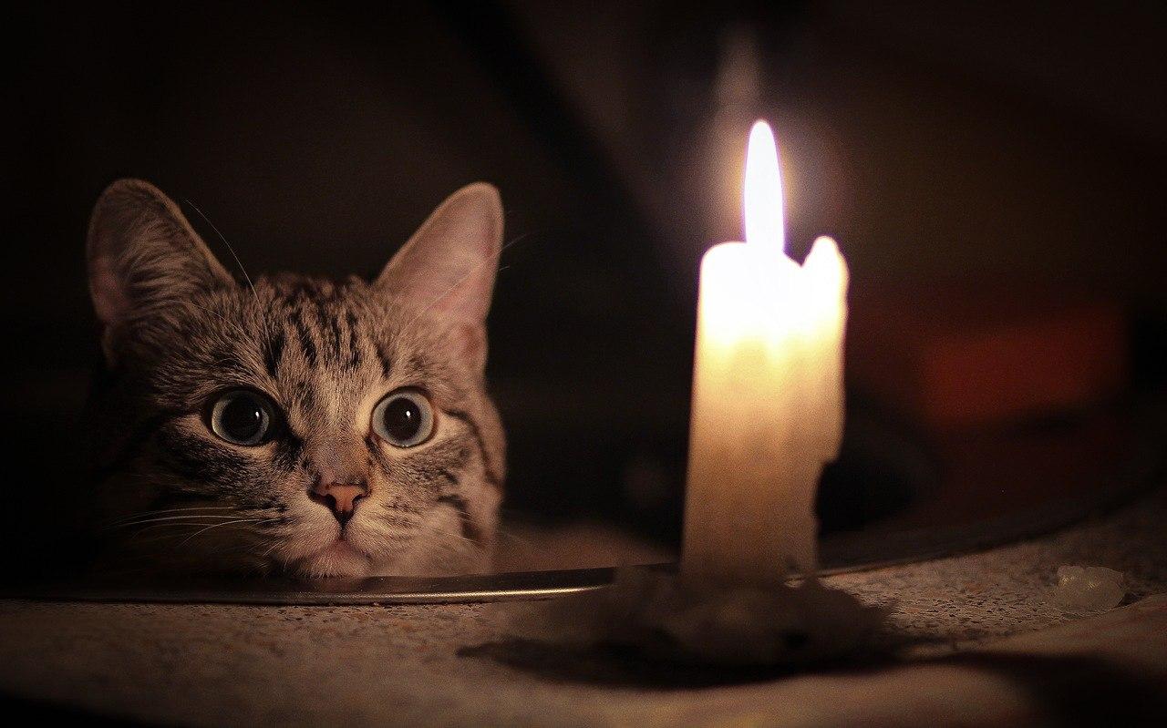 На следующей неделе в Твери снова будут отключать свет