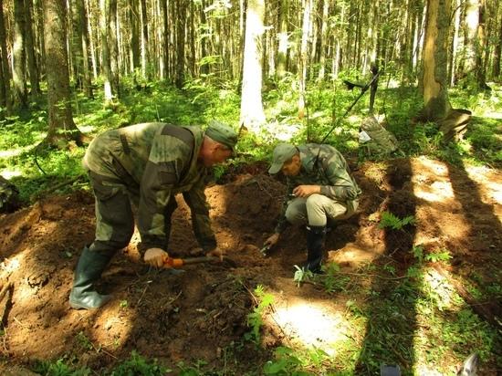 Останки неизвестного солдата обнаружили поисковики в Тверской области