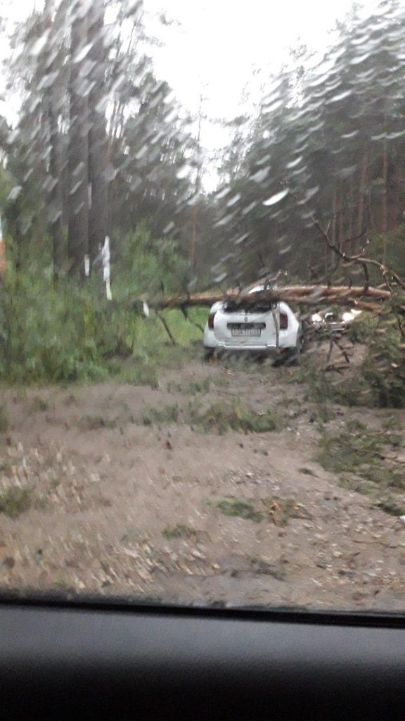 В Тверской области разбушевалась стихия