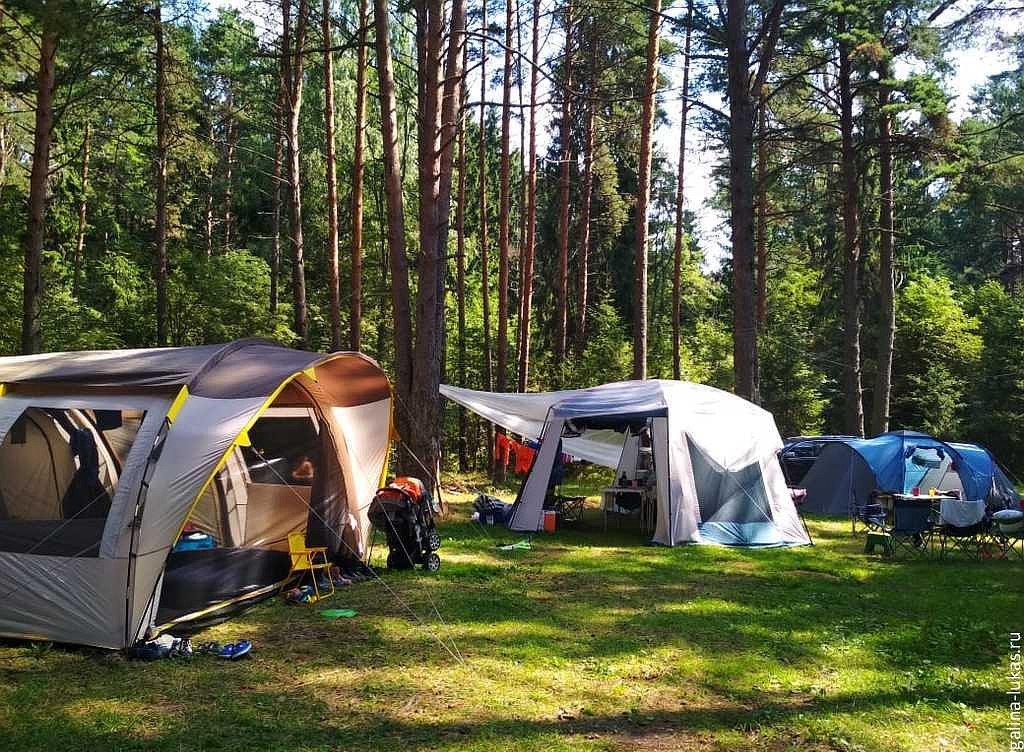 Тверская область в ТОП-10 популярных регионов для палаточного отдыха