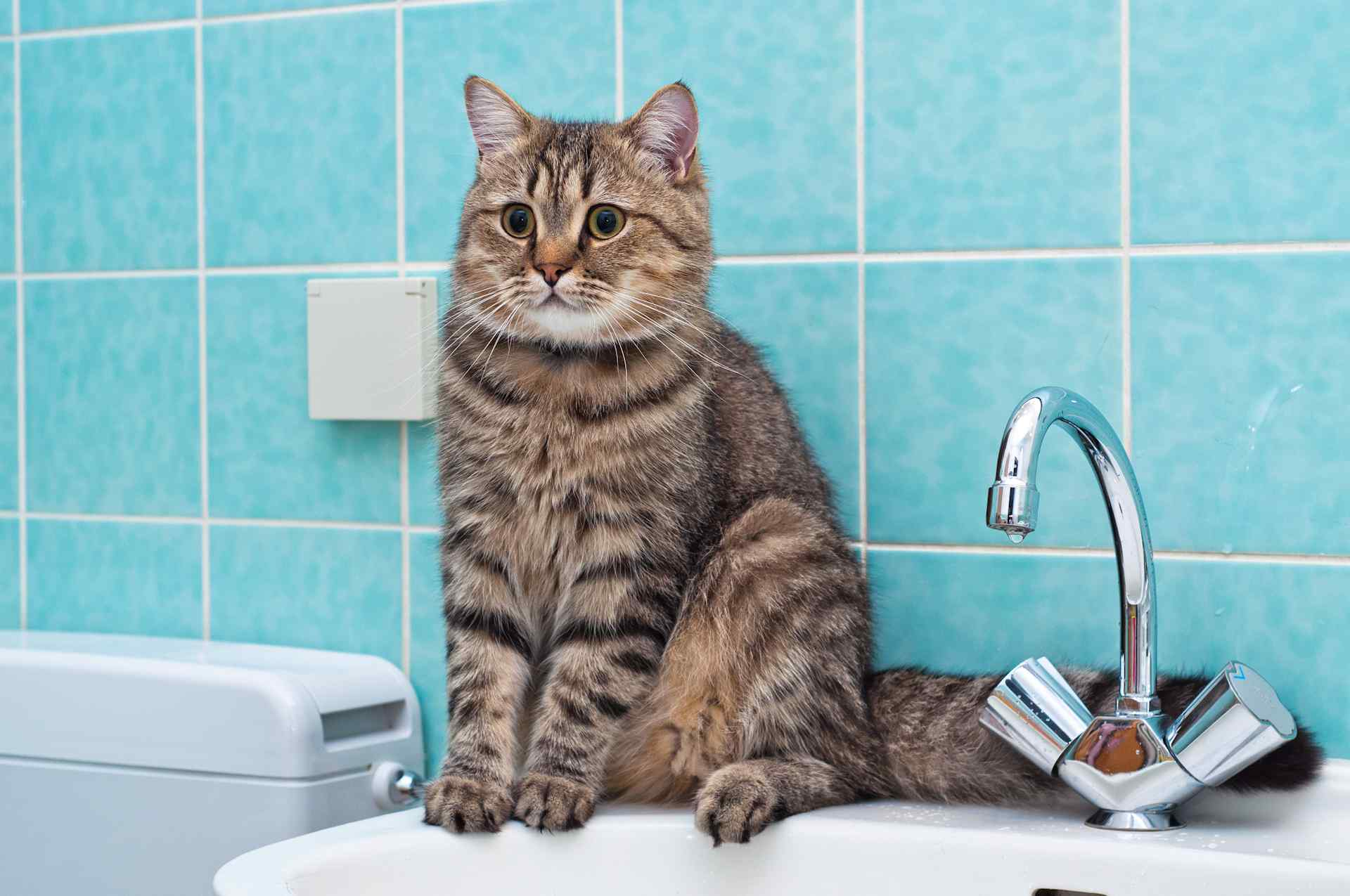 В Московском районе Твери пройдет плановое отключение горячей воды
