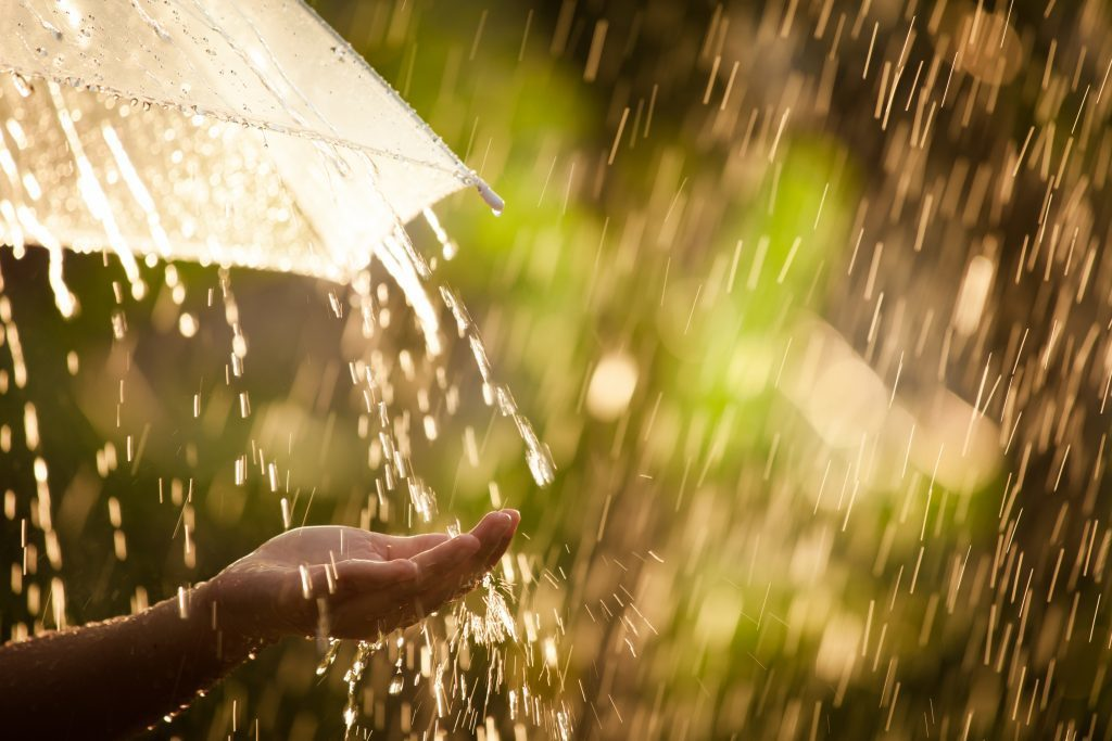 На Тверскую область обрушатся ливневые дожди с грозами