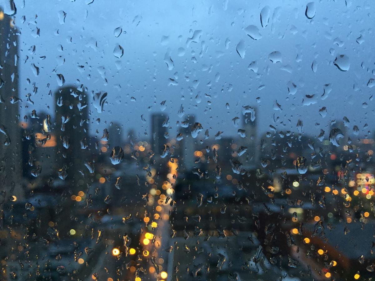 Последний день рабочей недели в Тверской области будет дождливым