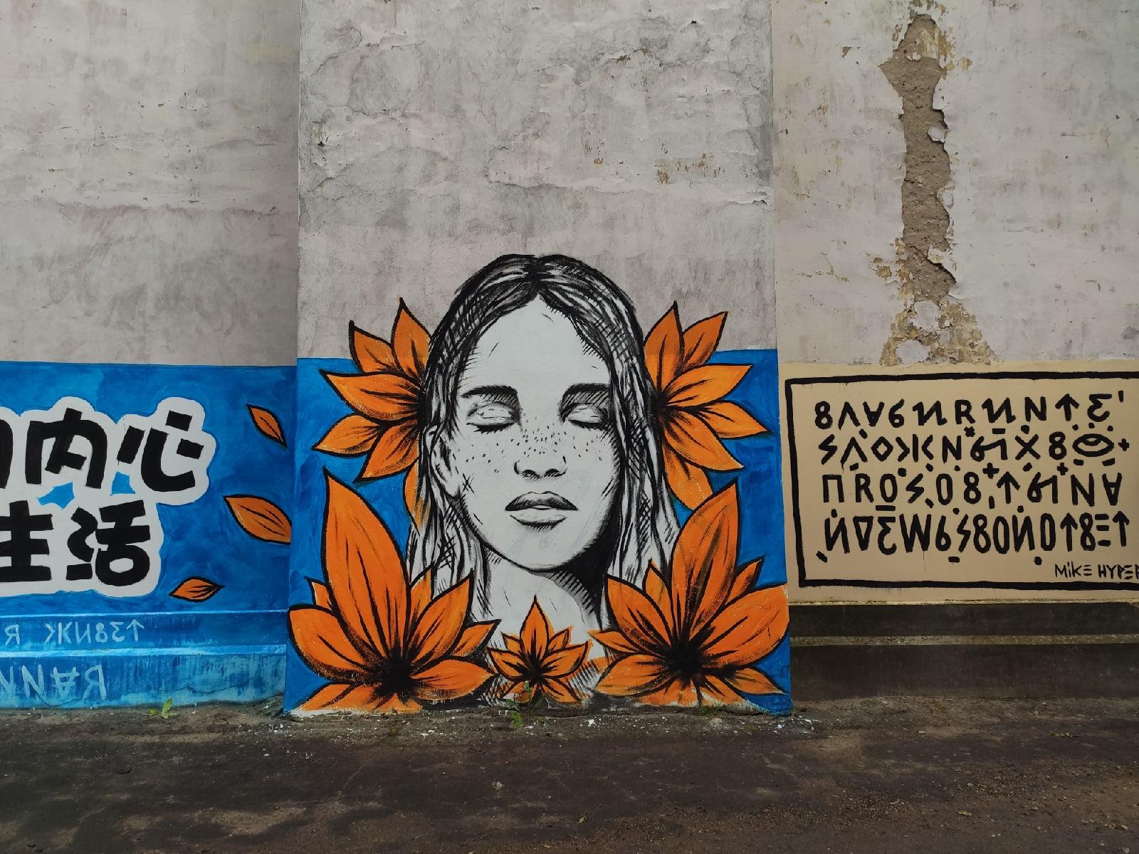 Тверской художник Михаил Дрёмин создал новое граффити