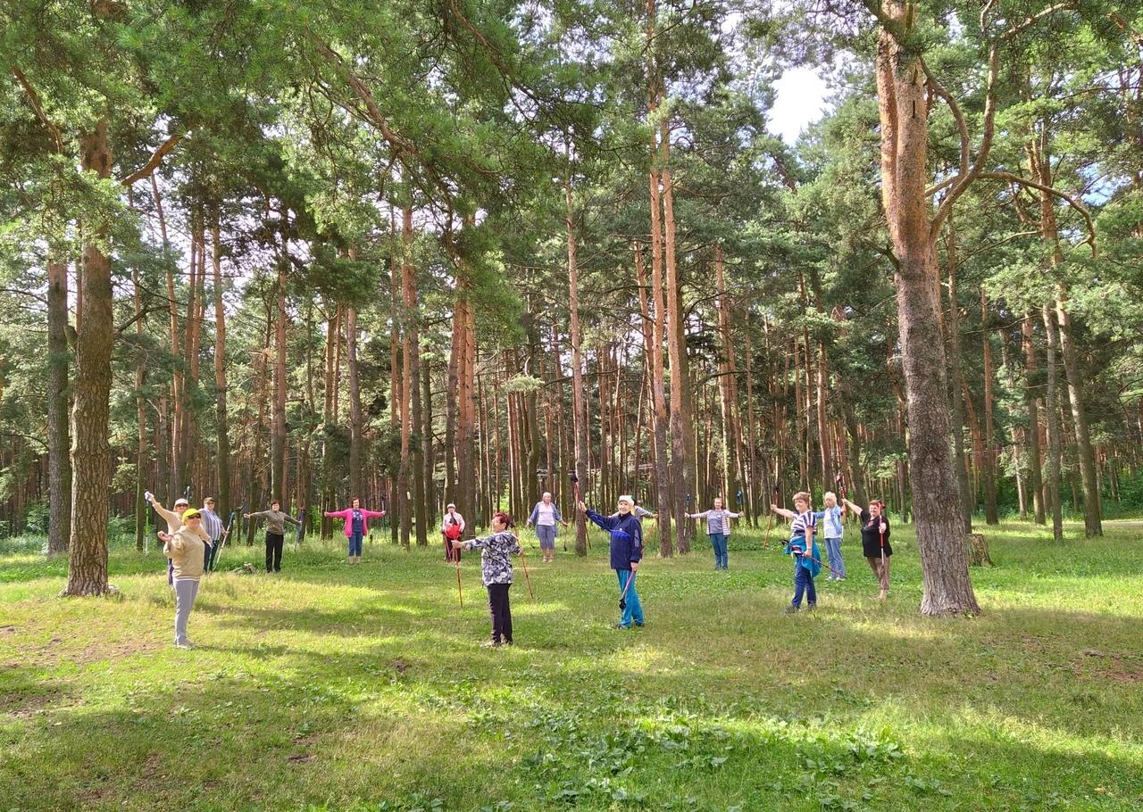 Тверских пенсионеров приглашают на «скандинавские» прогулки