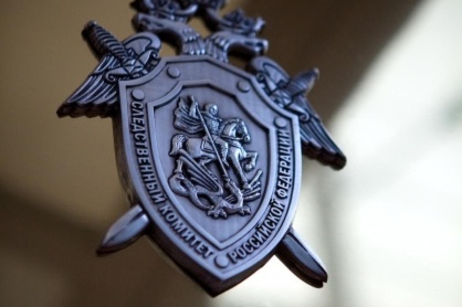 Девочка, которая пропала в Тверской области, найдена живой