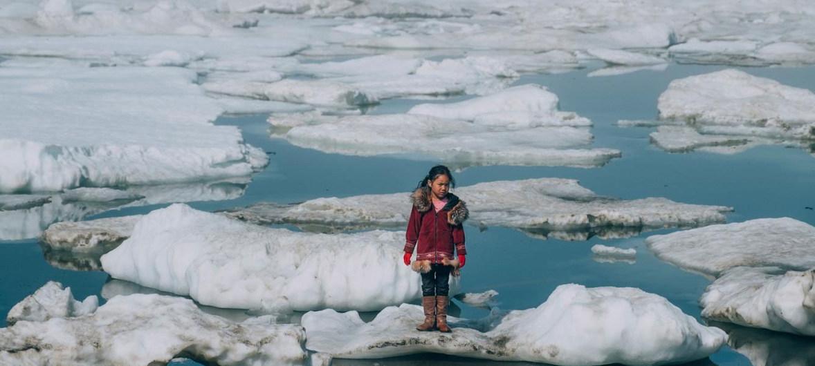 Получить участок земли в Арктике могут жители Тверской области