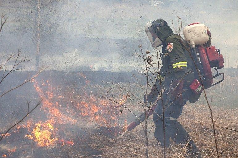Лучшего лесного пожарного Тверской области выбирают на региональном этапе Всероссийского конкурса