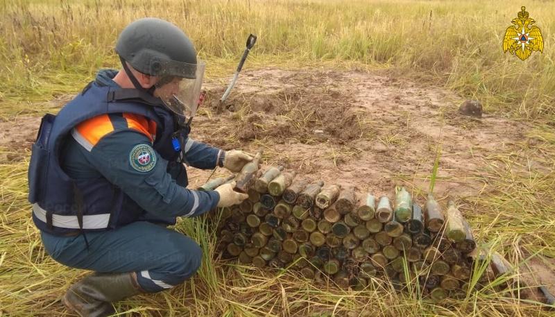 Отголоски войны: в Ржевском районе обнаружено 183 бутылки с зажигательной смесью