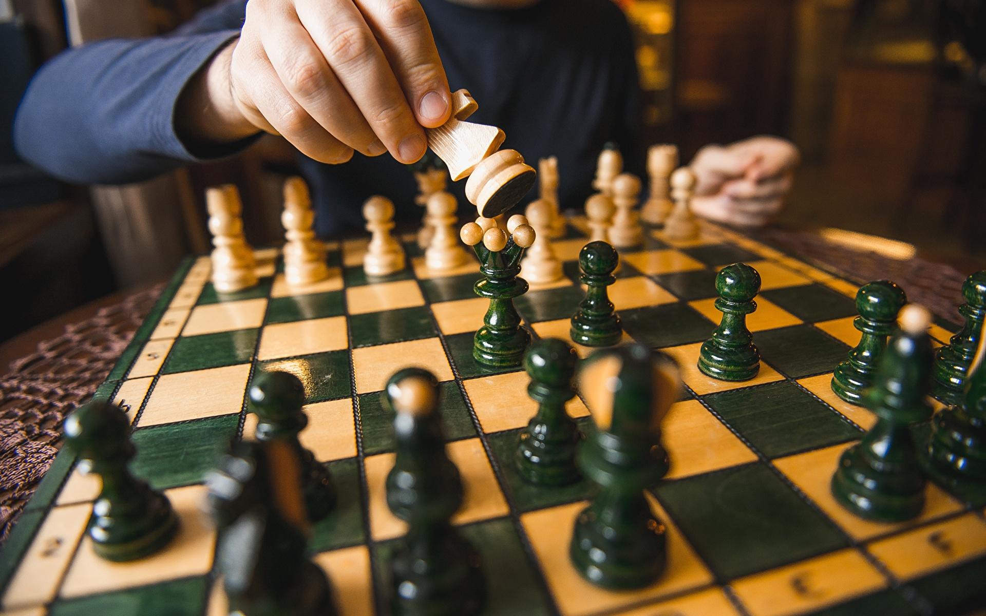 В Ржеве завершился турнир по быстрым шахматам