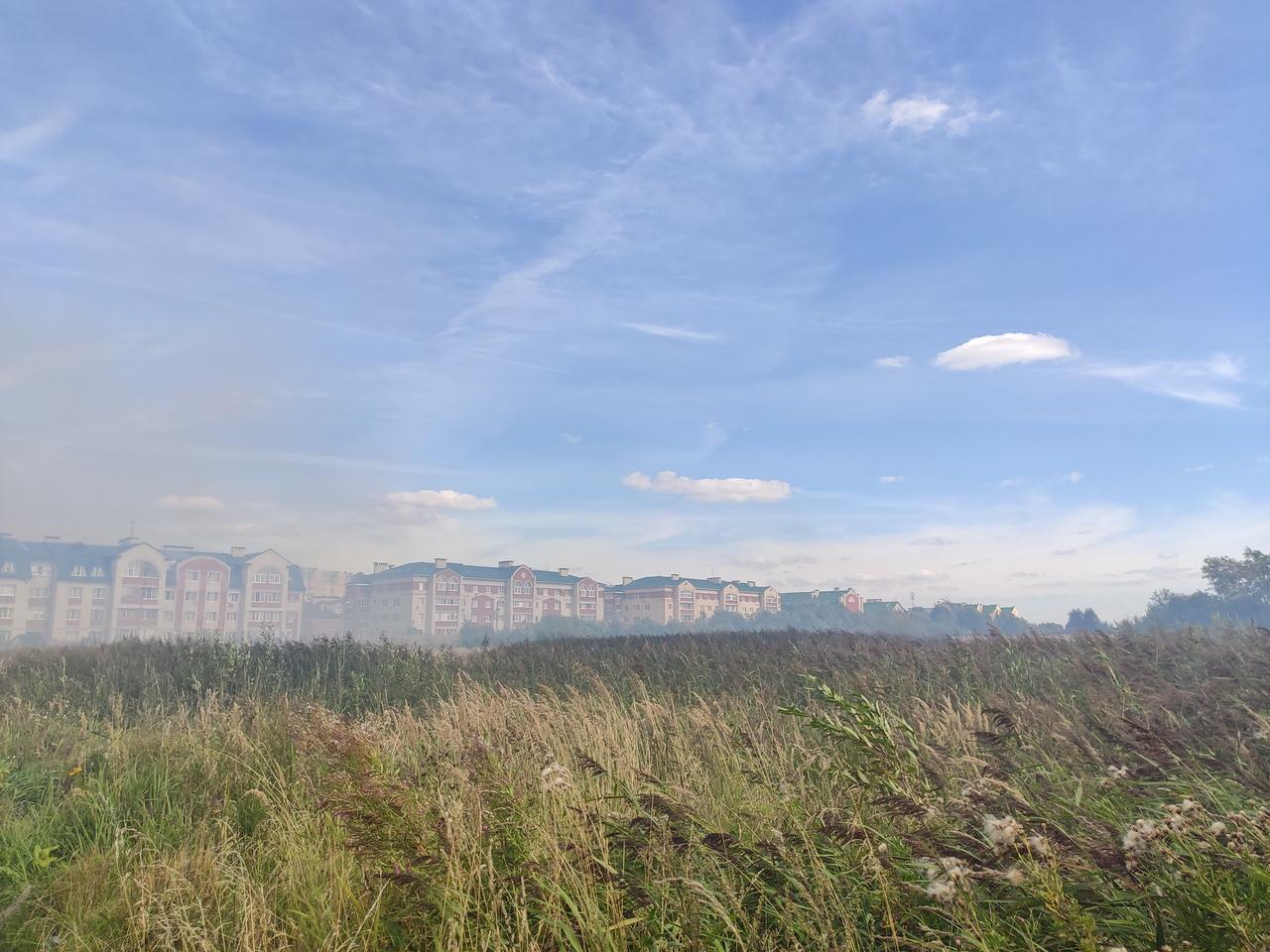 В сеть попали фотографии пожара на поле в Твери