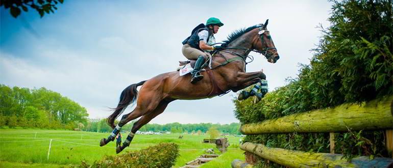 Всероссийские соревнования по конному спорту стартуют в Тверской области