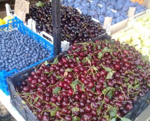 В Тверской области выявили нарушения в сфере семеноводства и карантина растений