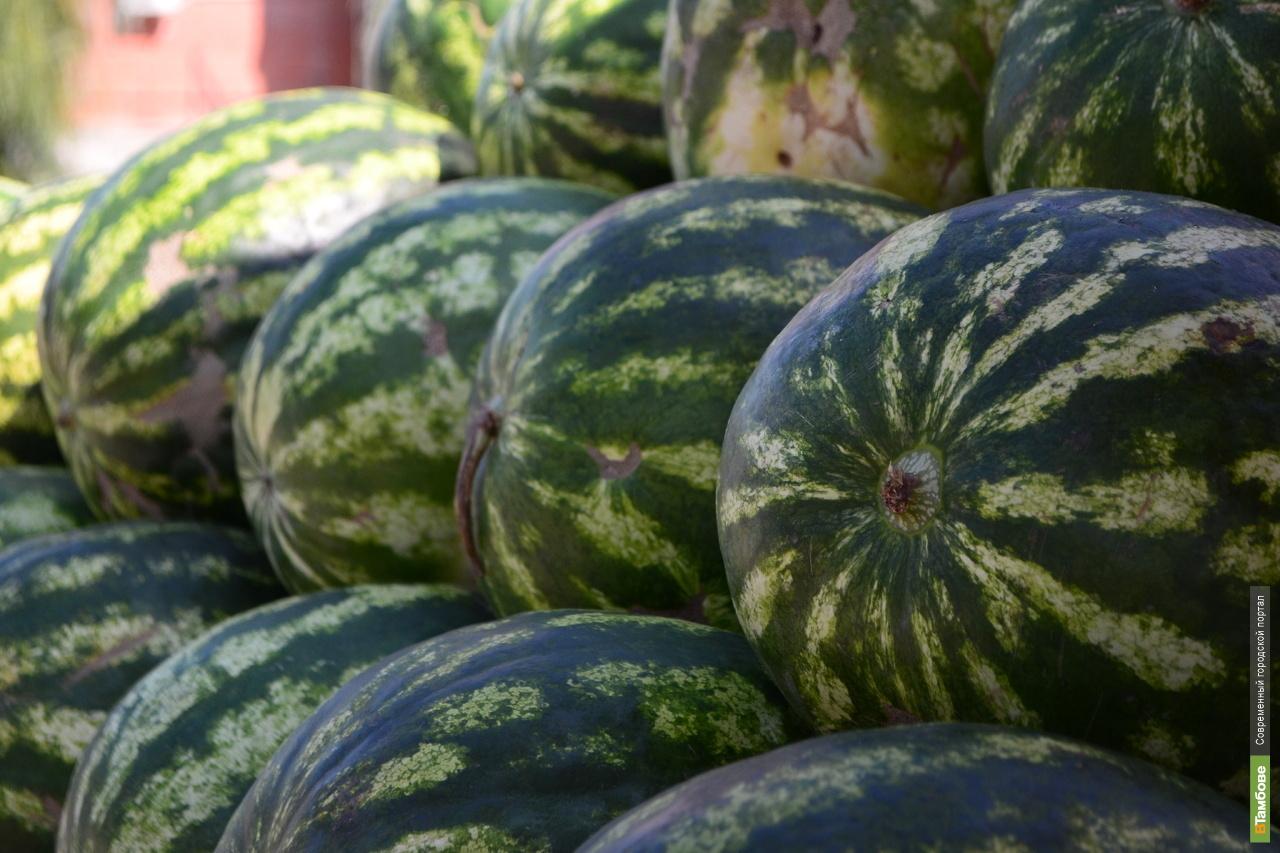 В Тверской области продавали подкарантинные арбузы