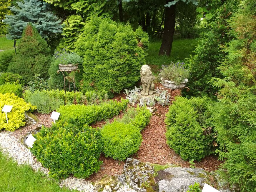 В Ботаническом саду Твери пройдет вечер поэзии