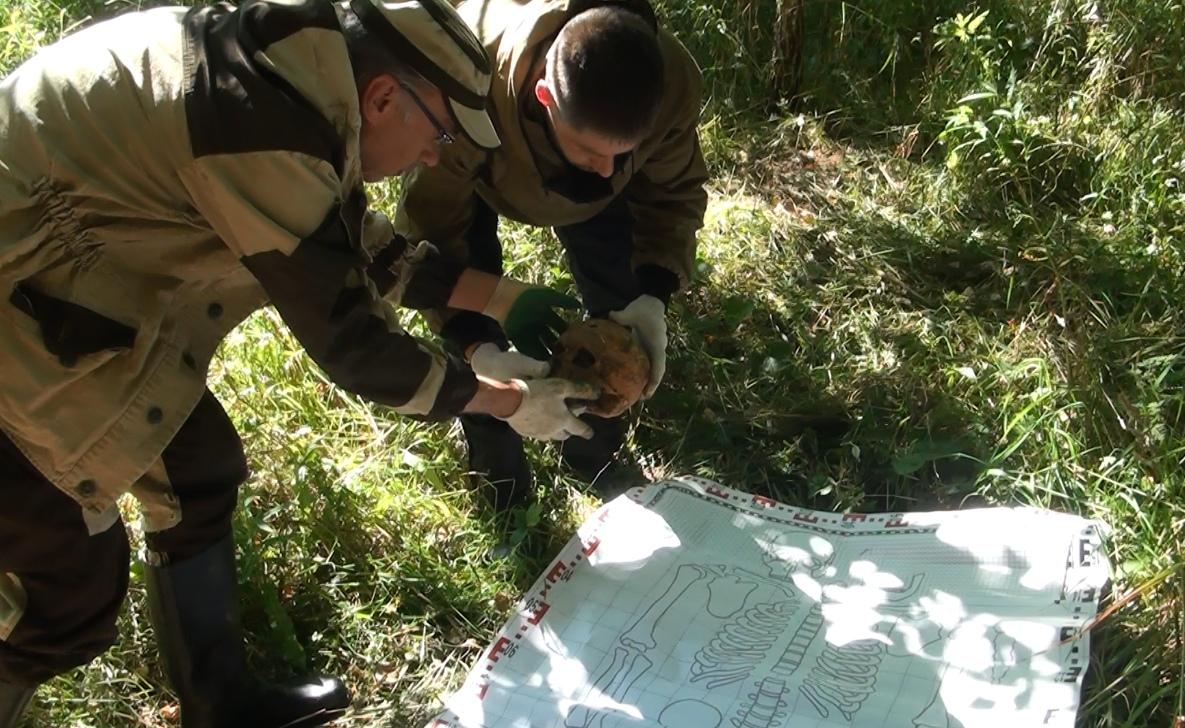 Останки 24-х бойцов подняли поисковики в Тверской области