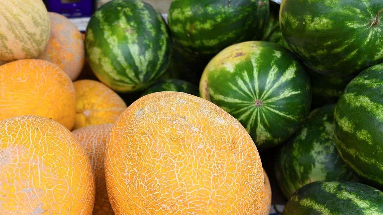 В Тверскую область завезли опасные арбузы и дыни
