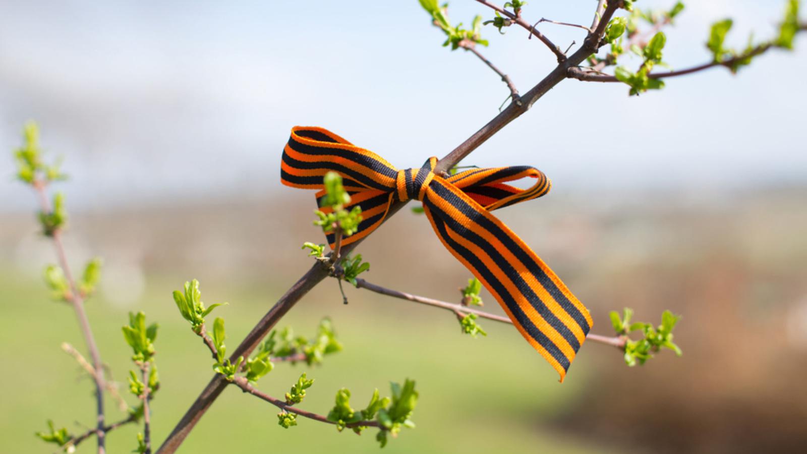В Тверской области сажают «Сады памяти»
