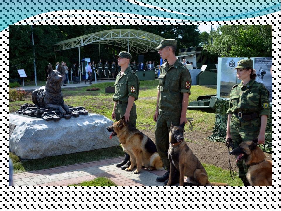 Музей Победы отпразднует День фронтовой собаки