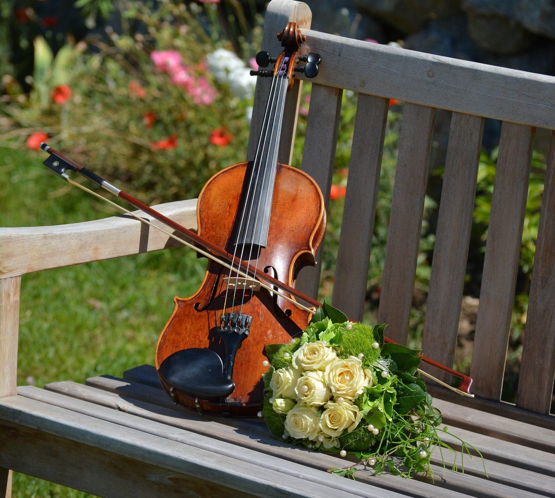 В тверском Ботаническом саду пройдет вечер музыки