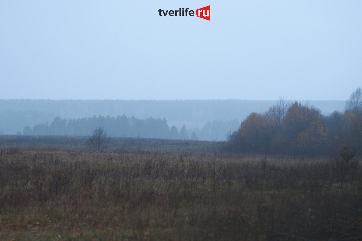 В Тверскую область придет похолодание