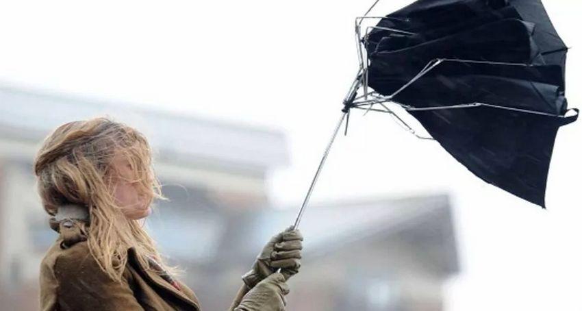 На Тверскую область надвигается ураганный ветер