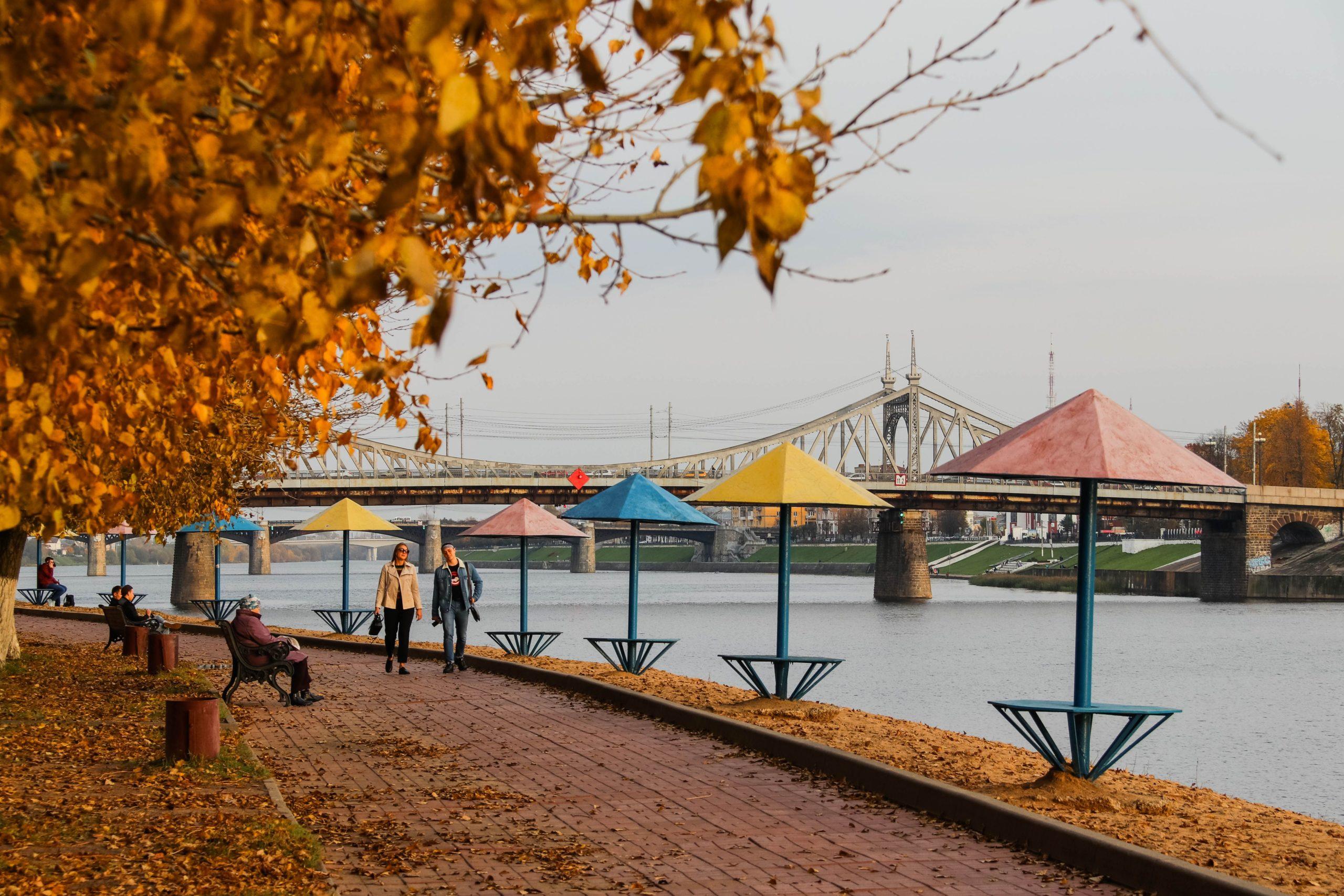 В последнее воскресенье сентября в Тверской области будет тепло и сухо