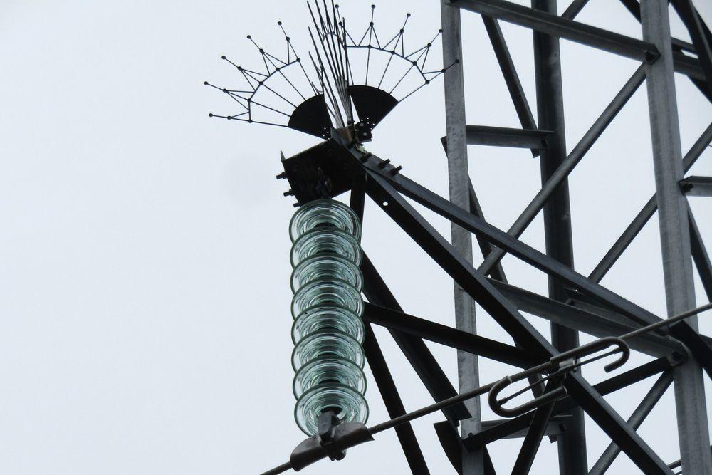 Энергетики «Россети Центр Тверьэнерго» устанавливают птицезащитные устройства на линиях электропередачи