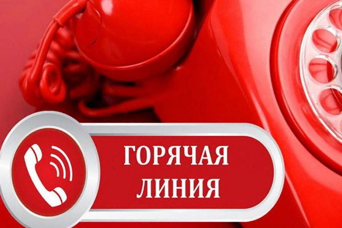 """На питание в школьной столовой можно пожаловаться на """"горячую линию"""" в Тверской области"""