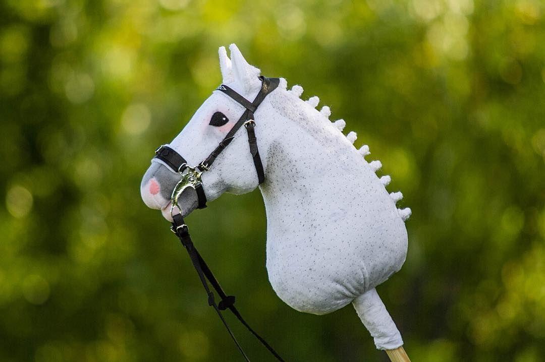 Хоббихорсинг и понячьи скачки: в Твери отметят «День лошади»