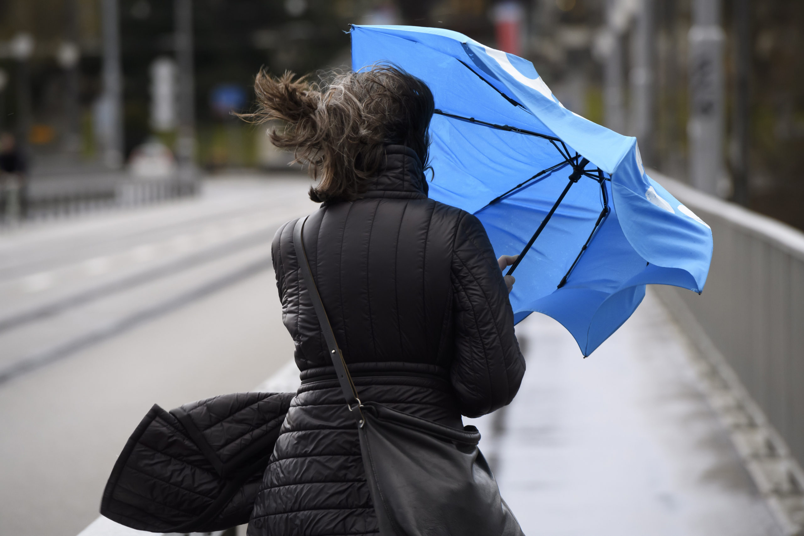 Ураганный ветер надвигается на Тверскую область